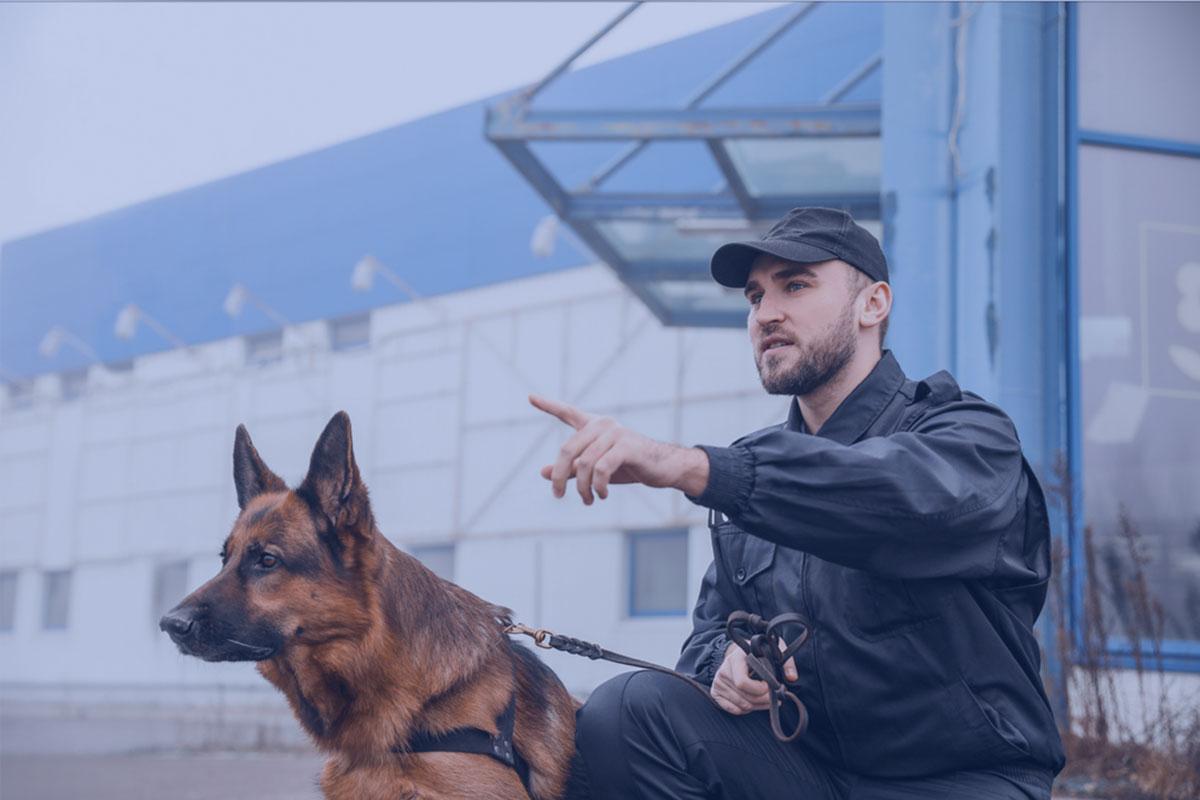 Agent de sécurité privée et son chien