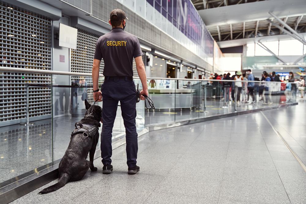 Agent de sécurité avec son chien dans un aéroport